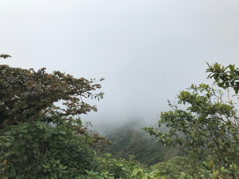 Costa Rica - Monteverde - Cloud FOrest - Continental Divide - La Ventana